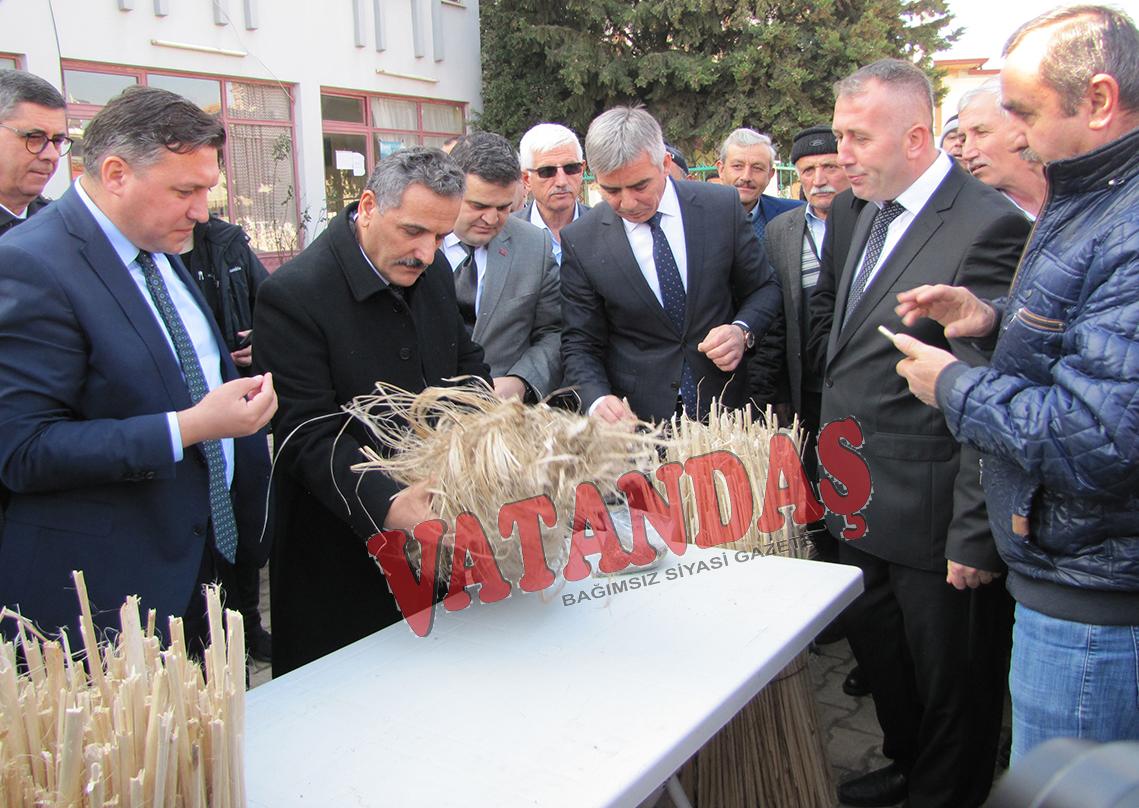 Vali Osman Kaymak ve Samsun İl Tarım ve Orman Müdürü Nail Kırmacı  kenevir ekimi için Vezirköprü'de ziyarette bulundu..Kenevir'in Üretimi de Tesisi de Vezirköprü'de Olacak