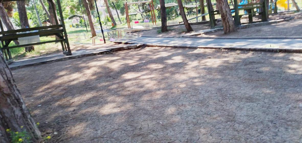 Okuyucu Mektubu Çamlık Parkı Bakım Bekliyor
